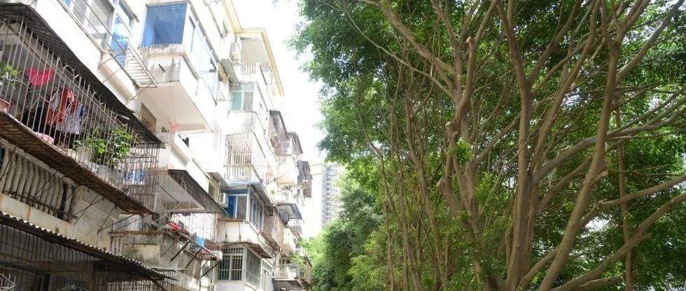 广西17.09万套城镇老旧小区将旧貌换新颜 7月前开工