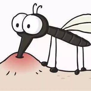 被蚊子咬了 为啥会鼓了大包中间还长水疱