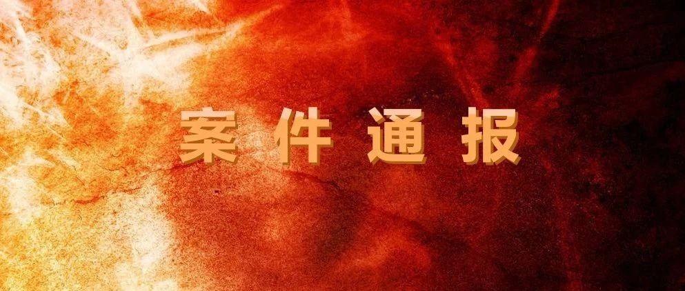 广西水利电力建设集团党委书记、董事长被开除党籍