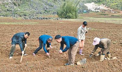 靖西汤亮村驻村第一书记:一生总要做几件有意义的事
