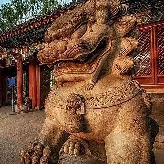 从乡野到高校:新中国第一批文科博士群像