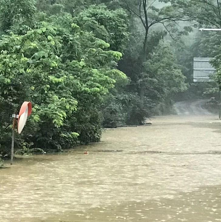 暴雨仍持续!预计未来3天内 柳州水文站水位达79.5米