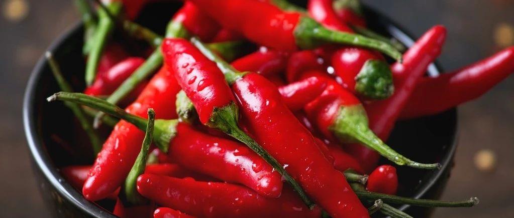 新研究:辣椒素延缓癌症扩散 吃辣原来有这么多好处