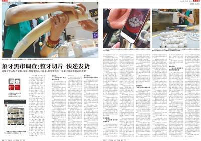 1月2日,《新京报》刊发了关于象牙黑市的调查报道。
