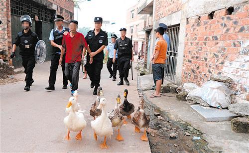 涉毒嫌疑人被民警带走