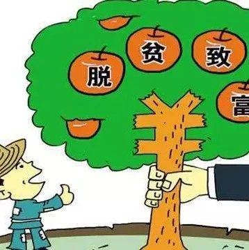改革开放40年 广西农村贫困人口从2100万降到267万