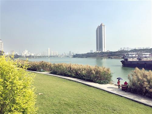 """工程以""""洋关情怀""""为主体建设理念,同时打造了美丽的城市滨水景观。 记者尹海明 摄"""