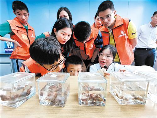 体验者们在病理科参观人体胚胎标本