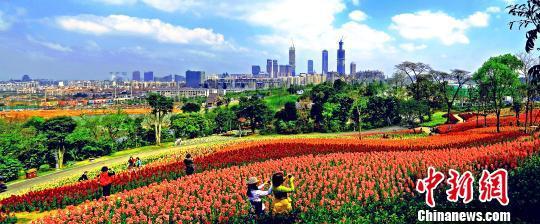 2019中国—东盟市长论坛将聚焦城市可持续发展