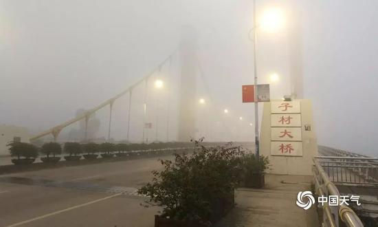 图为大年初一的清晨,大雾笼罩下的钦州子材大桥。