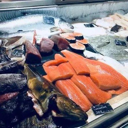 科普时间!淡水虹鳟鱼和海生三文鱼该怎么区分