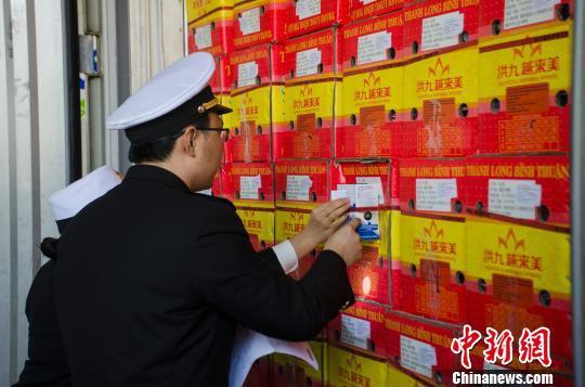 海关人员对进口水果进行查验。 翟李强 摄