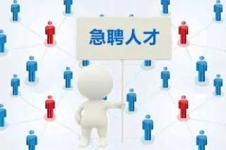 信息传输、计算机服务和软件业110835人