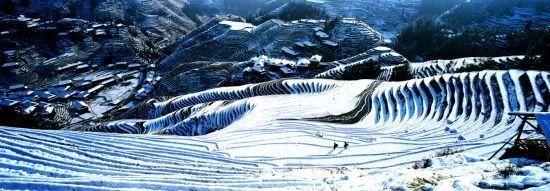 龙脊金坑红瑶梯田——千层天梯观景点  图:亚洲真人娱乐平台旅游发展委员会