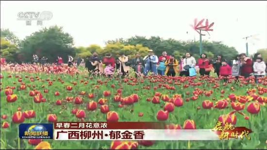 新闻联播又关注柳州 全国人民都看到了这里的美景