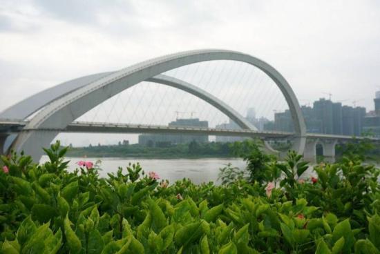 南宁大桥是进入市区和快速环道的主要通道