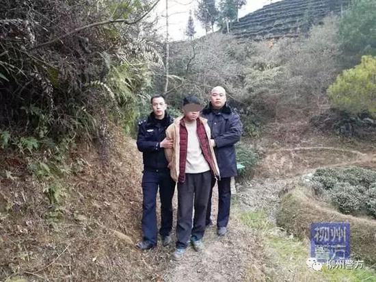 民警在牛棚里抓获了犯罪嫌疑人杨某山