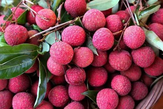 夏天来了!广西即将上市的那些水果 你都知道吗(图)