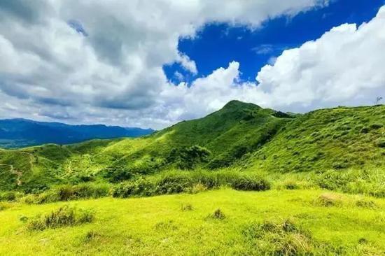 夏天新玩法!一起去广西的这些草原圣地放纵吧(图)