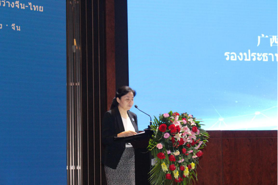 广西壮族自治区人民政府副主席丁向群发表讲话 苏世钰/摄
