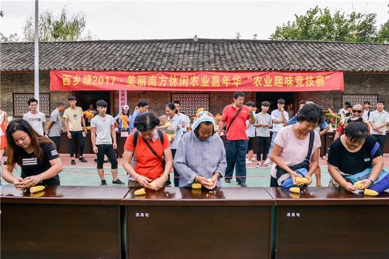 西乡塘区将举办首届农民丰收节 1+3+N活动轮番上演