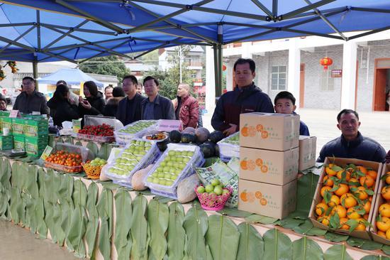 巴某村水果产品展览(摄影:林浩)