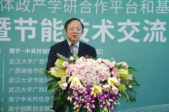 武汉大学节能环保研究院院长、首席科学家李晓明教授进行演讲 陈梓予/摄