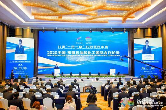 2020年中国—东盟石油和化工国际合作分论坛内容精彩纷呈