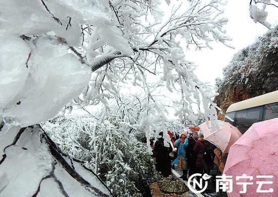 广西也有赏雪胜地 备上冬装适时出发(图)
