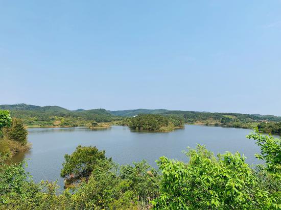花雨湖湖水风貌 苏醒/摄