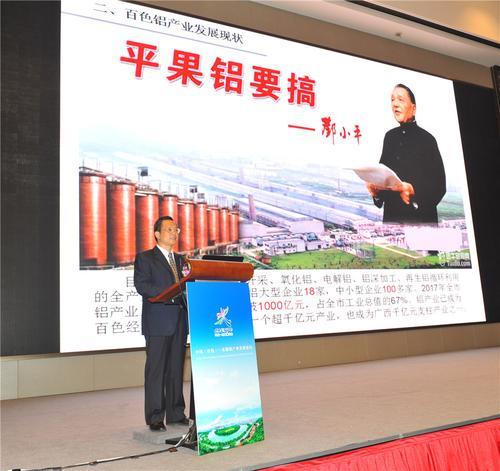 图为百色市领导石国怀在中国(百色)—东盟铝产业发展论坛上作推介。