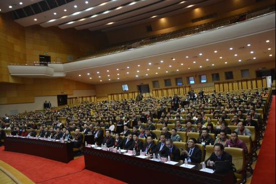 峰会共持续两天,得到多家国内外主流华人媒体的关注.