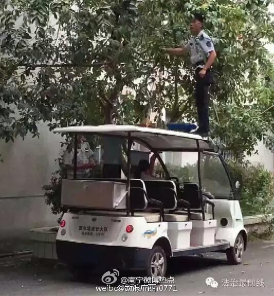 辟谣:网传南宁城管路边摘芒果
