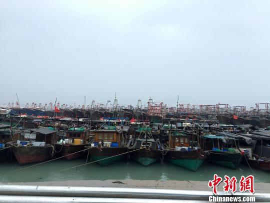 图为渔船在北海电建渔港避风 翟李强 摄