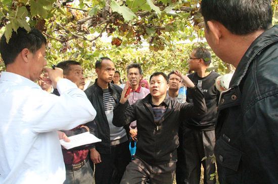 老师讲解葡萄种植技术
