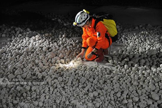 """一位科考探险队员正在观测洞内的""""穴珠"""".广西新闻网通讯员 韦禄东 摄"""