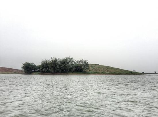 横县西津国家湿地公园一角