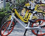 广西首次利用共享单车 解决演唱会前后出行难题