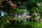 广西财经学院 绿野仙踪
