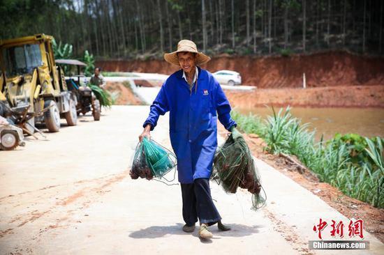 """南宁市郊藏着一个""""小龙虾村"""" 吃货们速速约起来"""