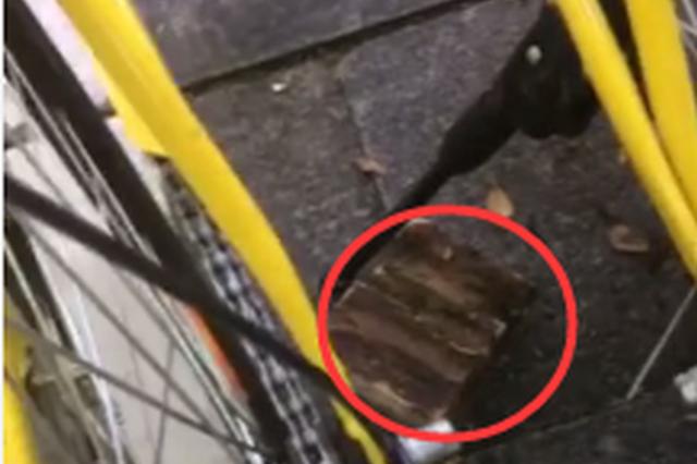 南宁小孩拿砖头砸共享单车 家长:他在玩儿(视频)
