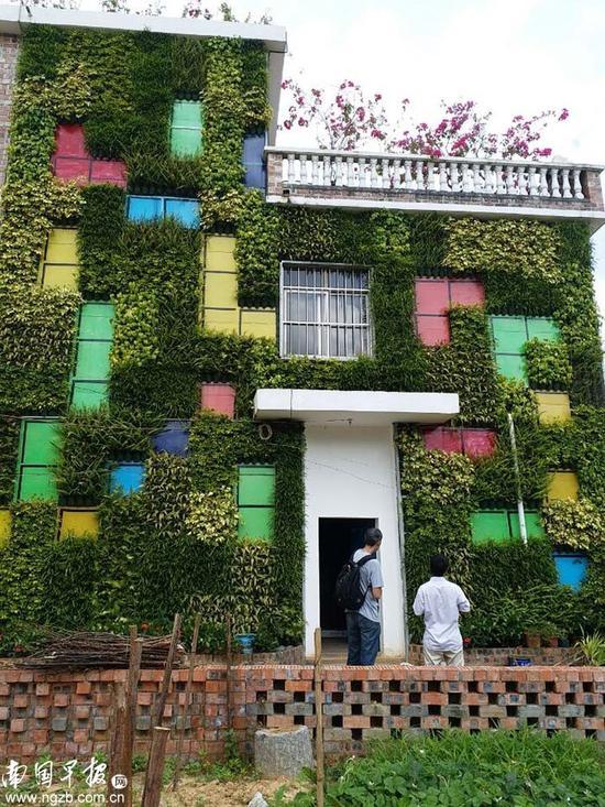 ▲青秀区长塘镇天堂村巴兰坡一户村民的楼房,外墙像一面花墙。