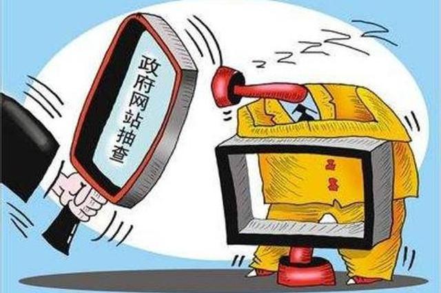 广西政府网站抽查情况 南宁被抽查政府网站全合格