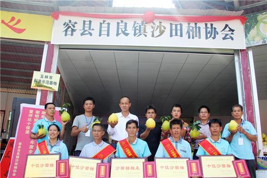 容县自良镇沙田柚协会