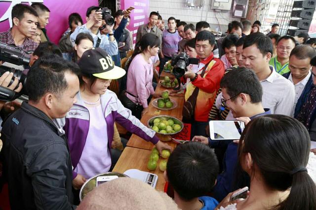 广西(北流)首届百香果电商旅游文化节开幕
