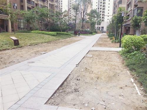 小区部分绿化带被铲掉,计划改建成停车位 本报记者 陆增安 摄