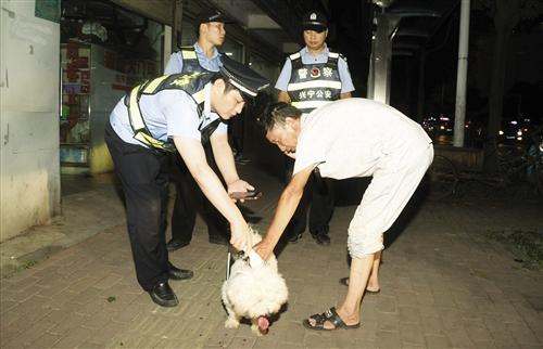 兴宁区民警在街头对犬只进行检查 本报记者 宋延康 摄