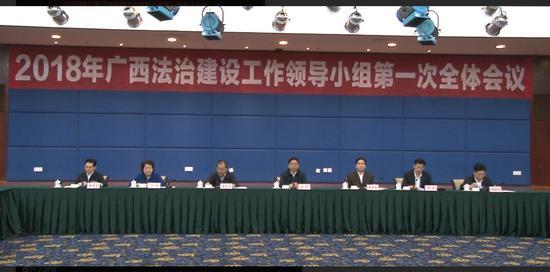 出席2018年广西法治建设工作领导小组第一次全体会议的领导