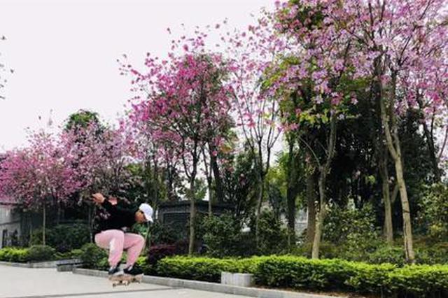 天气又搞事!柳州未来几天都是雨 说好的赏花呢