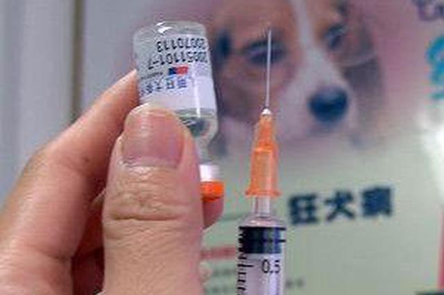 狂犬疫苗也敢造假?严格监管还需配合强力震慑